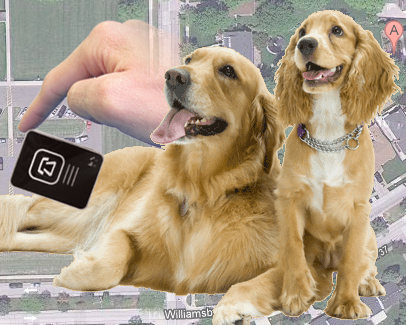 GPS Pet Tracking